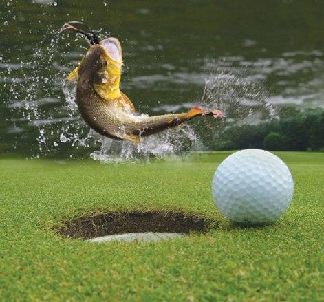 fishing_golf_550px.jpg